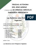 Las Bacterias como Patógenos Vegetales.docx