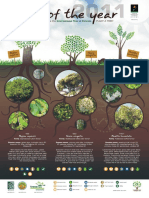 2011 Trees of the Year Poster