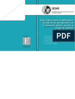 Guias Clinicas Para La Optimizacion Hemodinamica Perioperatoria de Los Pacientes Adultos Durante La Cirugia No Cardiaca