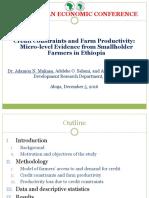 Adamon Et Al-[PRESENTATION]-Credit Constraints and Farm Productivity [2016 African Economic Conference]-Final
