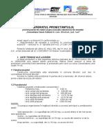 Referat Proiectant - Copy