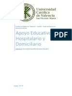 NEAE - Domiciliaria y Hospitalaria