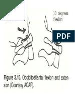 Cervical 1