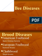 245973063-HOney-Bee-Diseases-2012