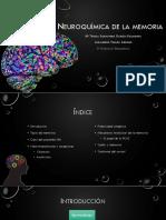 Neuroquímica de La Memoria