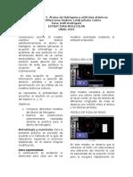 Informe Estructura Molecular
