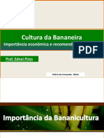 cultivo de bananeiras.pdf