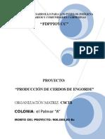 Proyecto El Palmar -A- (Bueno)