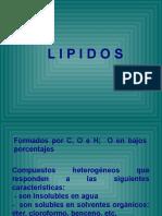 lipidos (1)