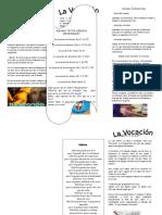 65716023-Triptico-vocacional.doc