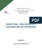 Direccion, Crecimiento y Liquidacion