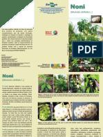 Cultura_do_noni.pdf