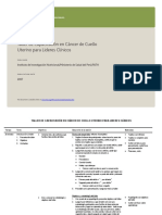 Taller Capacitacion Cancer Cuello Uterino Lideres Clinicos IIN MINSA PATH 2007