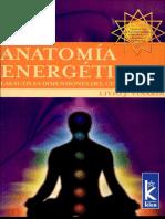 Anatomia energetica.pdf