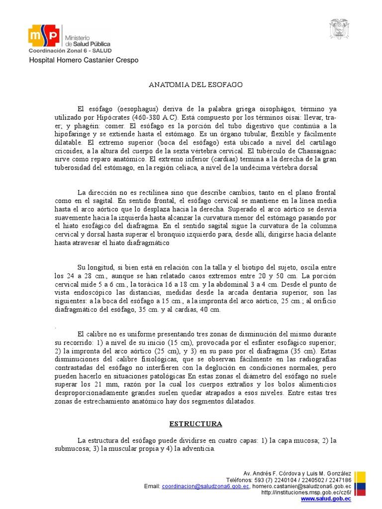 Anatomia Del Esofago (2)