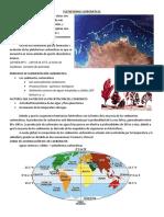 1773999299.Plataforma Carbonatica.pdf