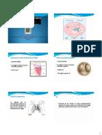 7 Fisiologia de Las Valvulas y Tono Cardiaco y Shock Circulatorio 2015 Unmsm