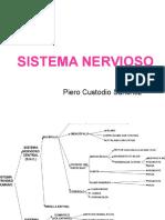 Sistema Nervioso-cima 2005