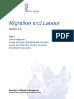 Migration and Labour (ILO_Section 2.6)