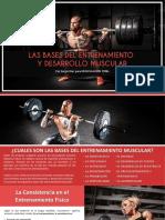 Las Bases Del Entrenamiento de Fuerza - Musculacion Total