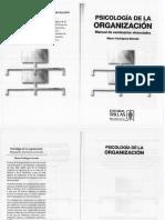 Psicología de la organización - Mauro Rodríguez Estrada.pdf