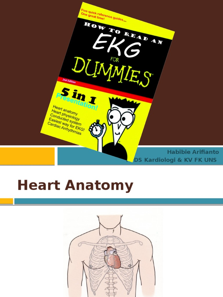 Anatomy, Physiology _ Conduction System of the Heart ...