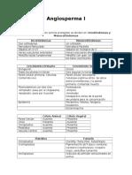 Angiosperma I