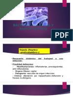 Bacteriemia, Sepsis y Shock Séptico