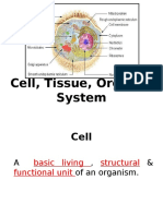 2 Cell, Tissue, Organ, System 2