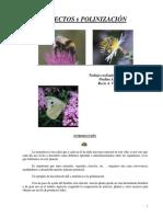 insectos y polinizacion.pdf