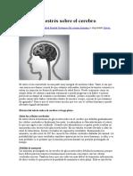 Efectos del estrés sobre el cerebro.docx