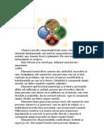 Cele cinci elemente.docx