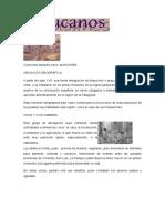 Informacion Araucanos