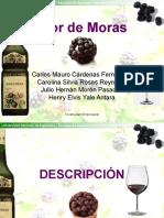 exposicion-licor-mora-1193960482270500-5