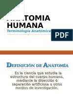 TERMINOLOGIA ANATOMICA 2