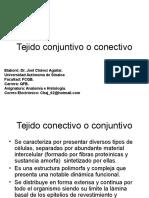 Tejido Conjuntivo o Conectivo CURSO 2010