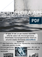 microbiolog.pptx