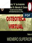 4- MIEMBRO SUPERIOR.pdf