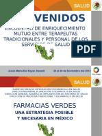 Farmacias Verdes NOEMI