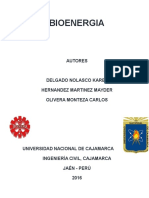 BIOENERGIA.docx