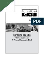 Juan Espinoza - V Pleno Casatorio