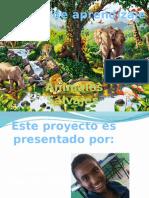 proyecto los animales salvajes.pptx