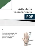 Articulația Radio Carpiană