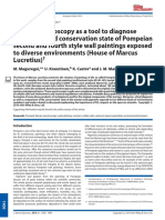 2009 Raman Spectroscopy as a Tool to Diagnose the Impact and Conservation State of Pompeian