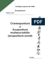 M27b 1316 C2 Craneopuntura Dr Meler