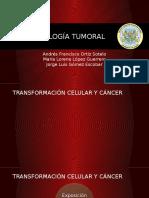 Inmunología Tumoral