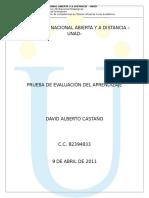 Formato1_DavidCastaño