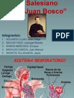 CIENCIA Y AMBIENTE Sistema Respiratorio (2)