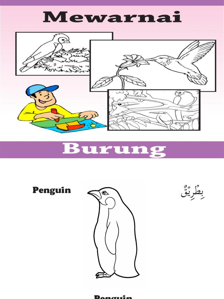 Mewarnai Burung