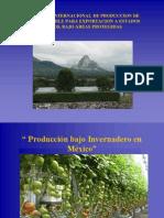 Exportacion Chile y Tomate